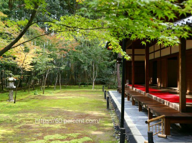 大徳寺塔頭・高桐院の庭園、楓の庭の画像
